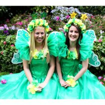 green-and-gold-fairy-wishes_l