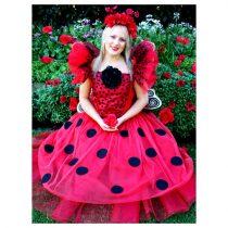 lady-bug-wishes_l