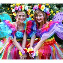 rainbow-fairy-wishes_l