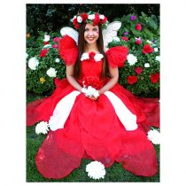 red-n-white-fairy